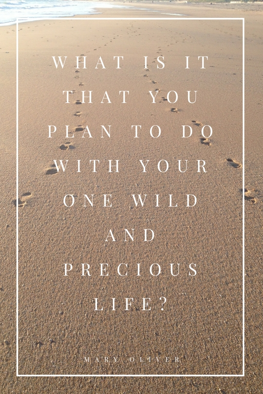What is it that you plan to do with your one wild and precious life-