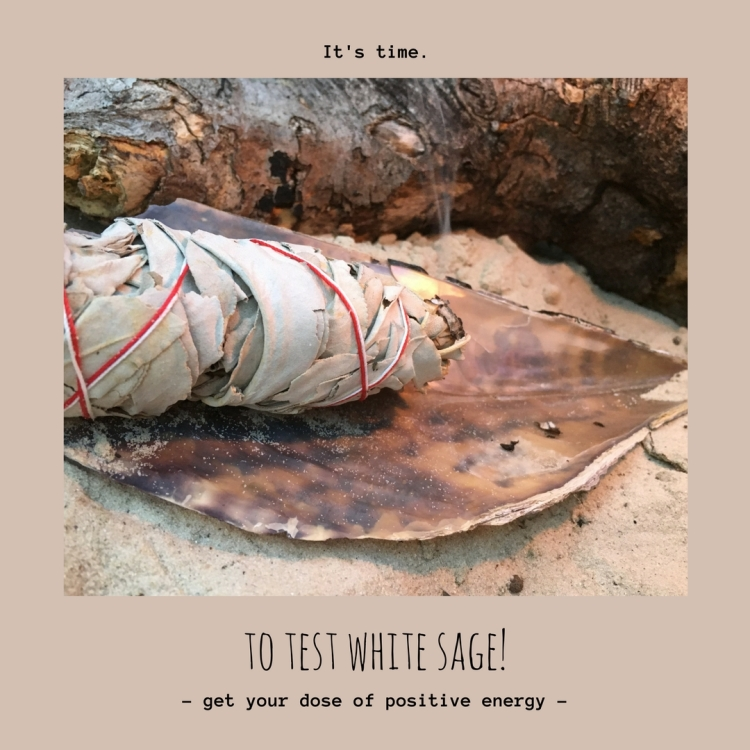 White sage (3)