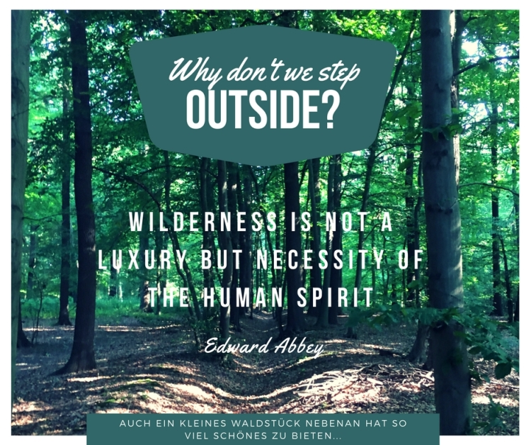 Wilderness is not a luxury but necessity of the human spirit